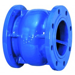 Ductile iron silent type check valve pn 16